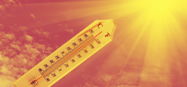 How to survive the UK heatwave cooped up in an office